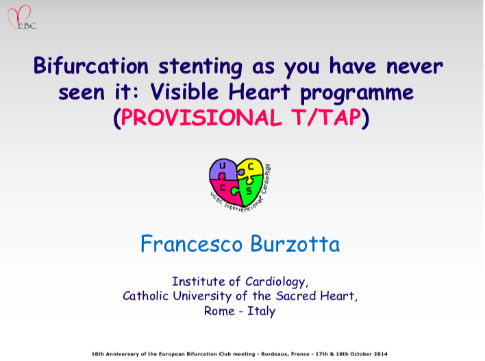 Bifurcation stenting as you have never seen it: Visible Heart programme  (PROVISIONAL T/TAP)