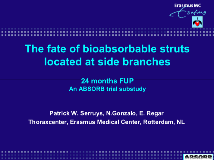 The fate of bioabsorbable struts located at side branches 24 months FUP An ABSORB trial substudy