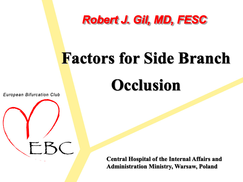 Factors for Side Branch Occlusion