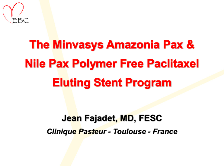 The Minvasys Amazonia Pax & Nile Pax Polymer Free Paclitaxel Eluting Stent Program