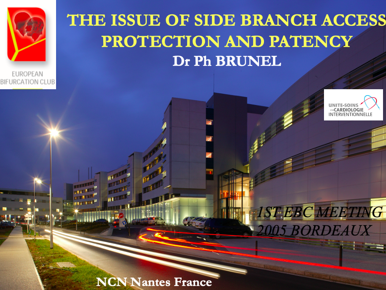 The issue of side branch access protection and patency
