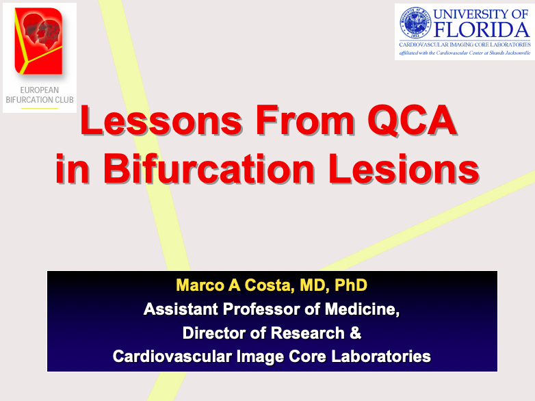 Lessons from QCA in Bifurcation Lesions