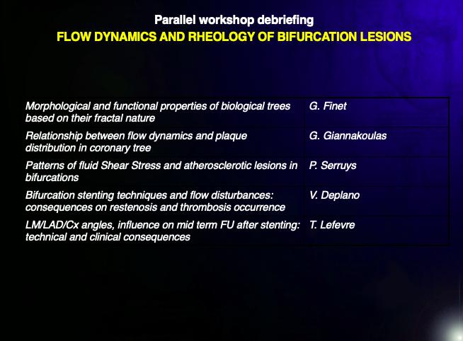 Flow dynamics and rheology of bifurcation lesions
