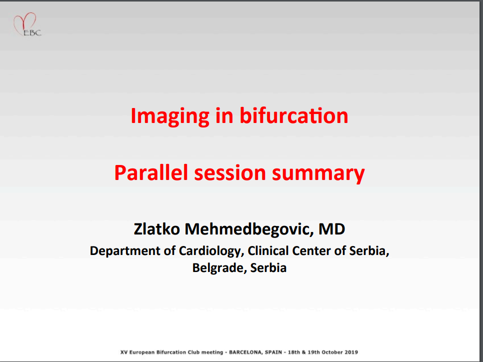 Imaging in Bifurcation – Parallel Session Summary